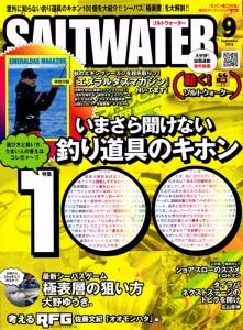 SW1609 (588x800)